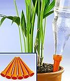 Arroseur de plantes - Lot de 6