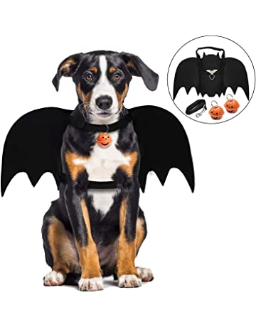 Amazon.co.uk   Clothing & Accessories for Dogs
