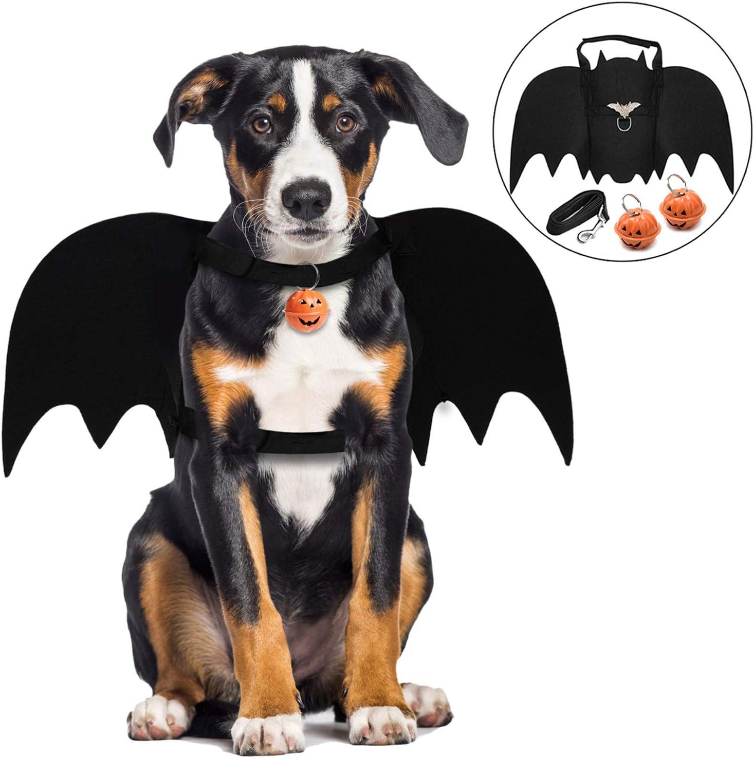 Dog Bat Pet Costume