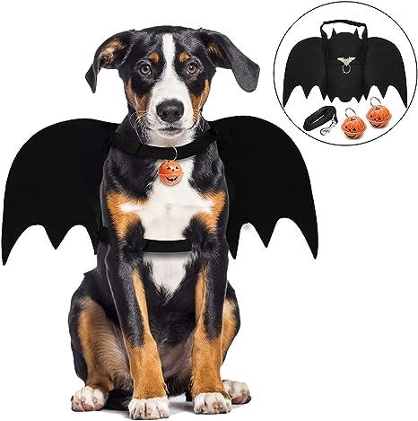 Alas de Perro, Disfraz de Perro de murciélago de Halloween/alas de ...