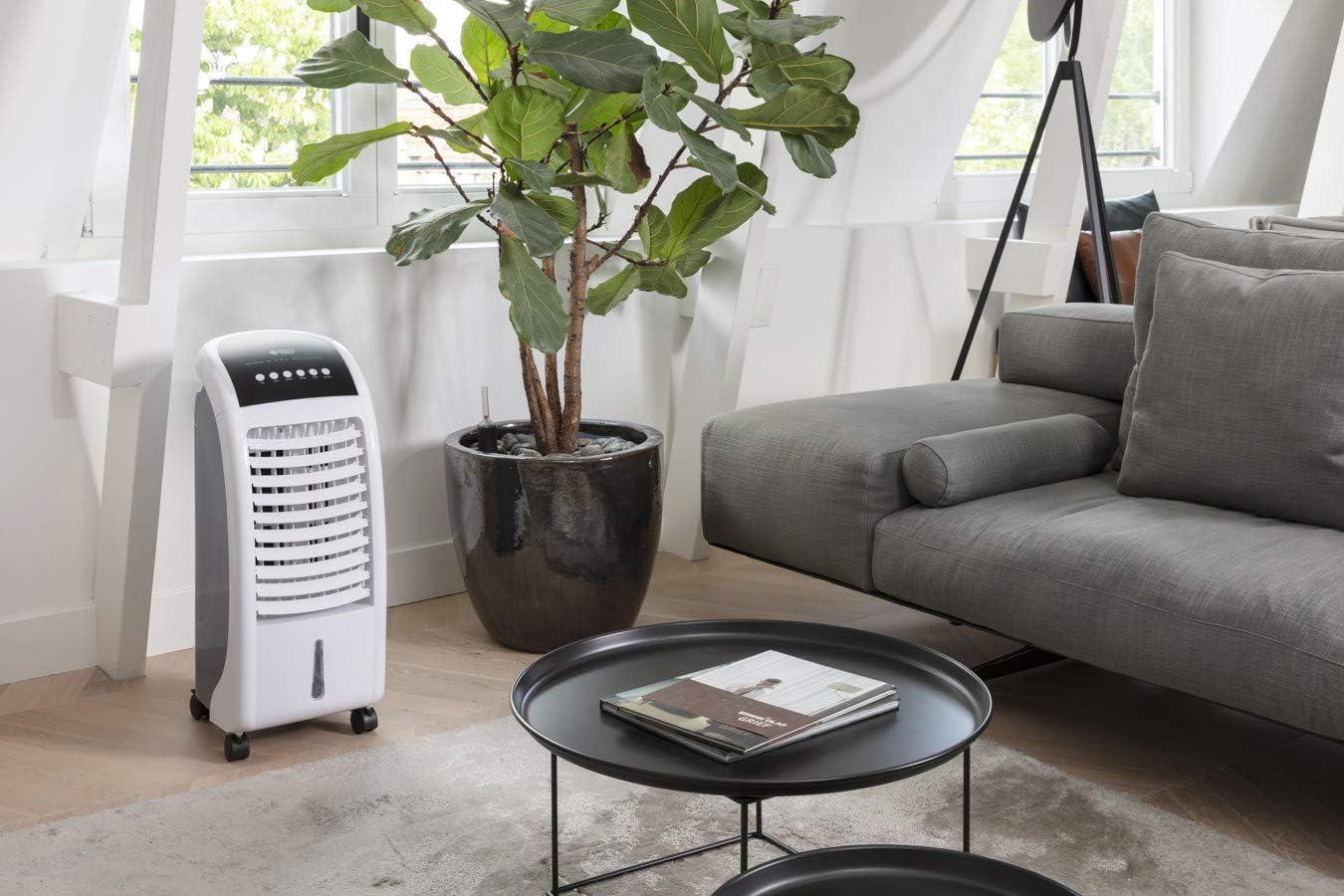 DUTCH ORIGINALS Climatiseur mobile ventilateur 65 W Refroidisseur dair /économe 5,5 L 3 vitesses Mode oscillation Rafra/îchisseur dair avec t/él/écommande