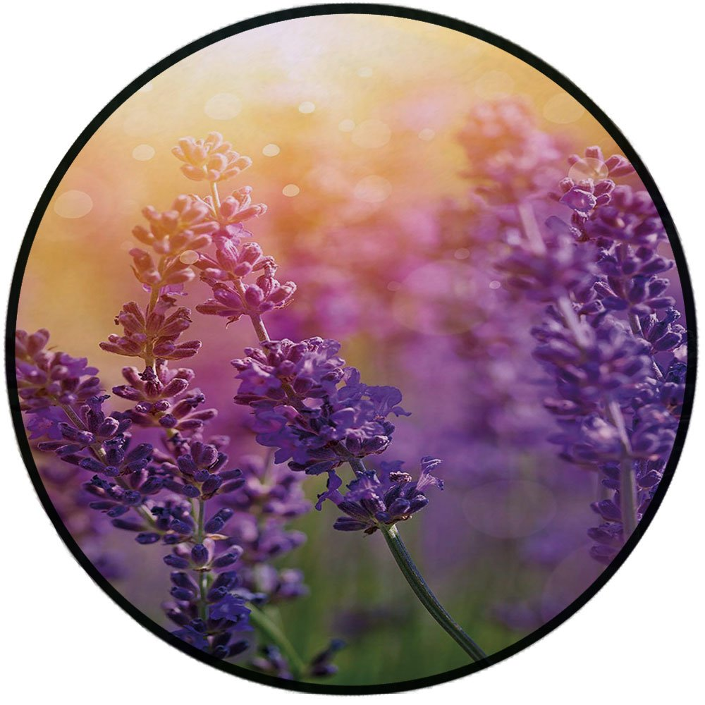 Printing Round Rug,Lavender,Detail of Scenic Gardening Plants Flourishing in Springtime Fresh Woods Mat Non-Slip Soft Entrance Mat Door Floor Rug Area Rug For Chair Living Room,Violet Apricot Green by iPrint (Image #1)