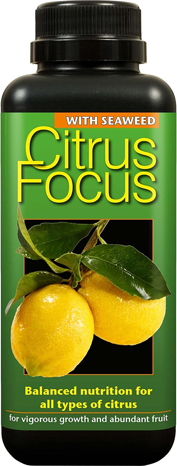 Citrus Focus Concentrated Liquid Plant Nutrient for all Citrus trees (5 Litres)