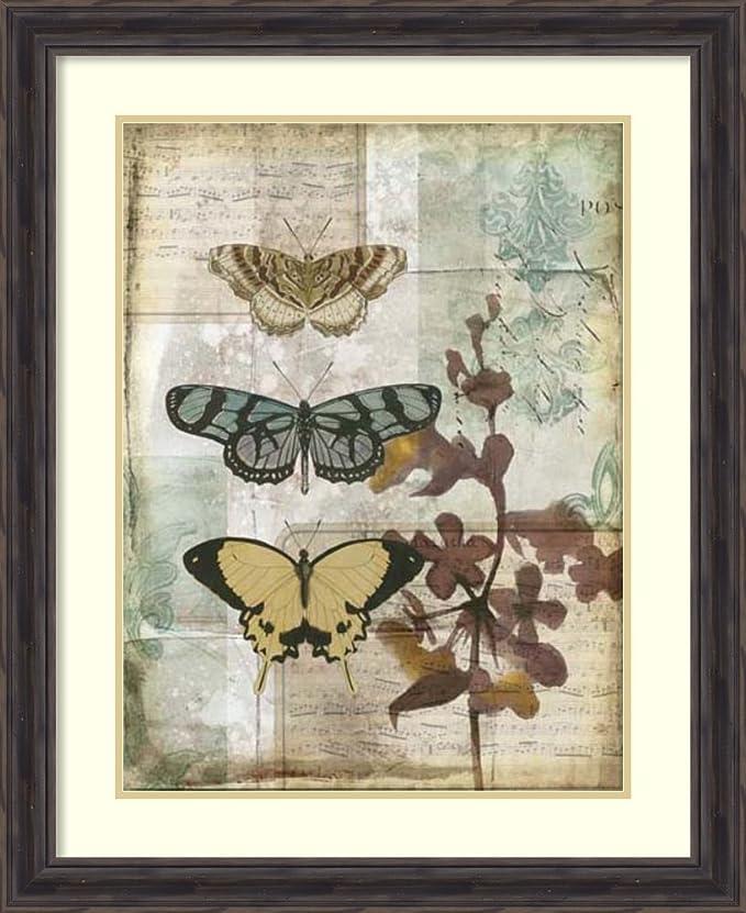 Framed Wall Art Print Music Box Butterflies I By Jennifer Goldberger 26 38 X 32 38 Amazon In Home Kitchen