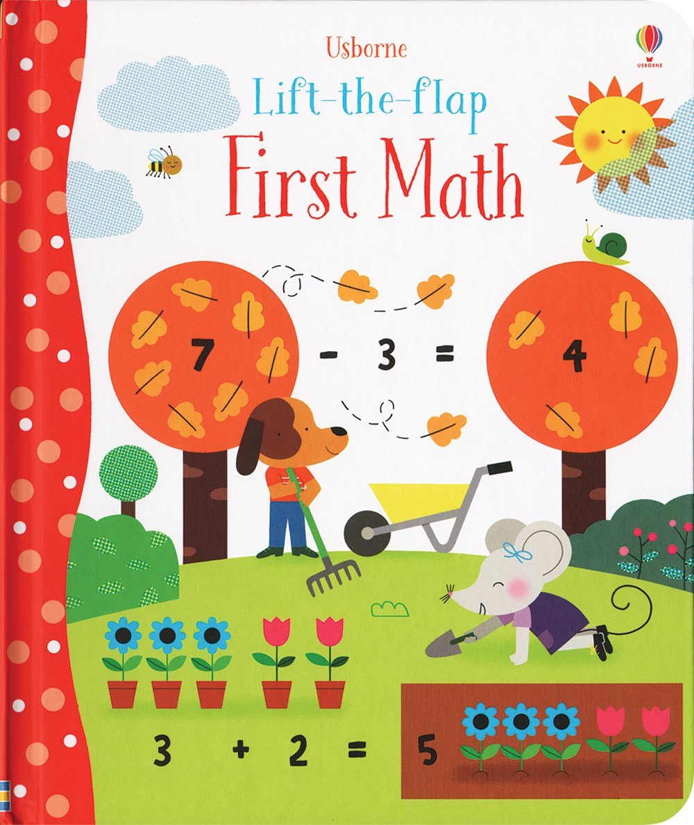 First Math Lift-the-Flap: Felicity Brooks: 9780794539269 ...