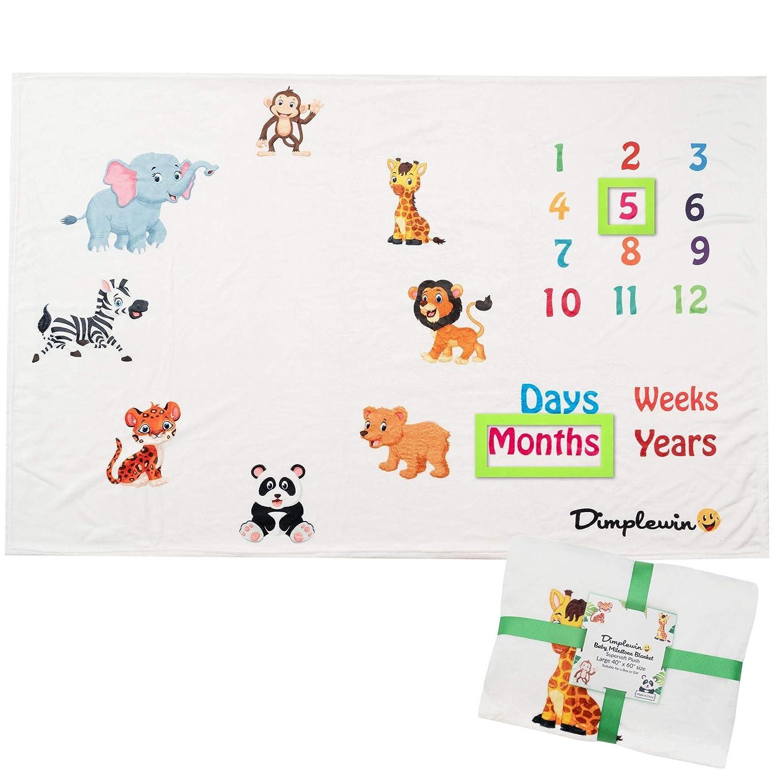 Baby Monthly Milestone Blanket...
