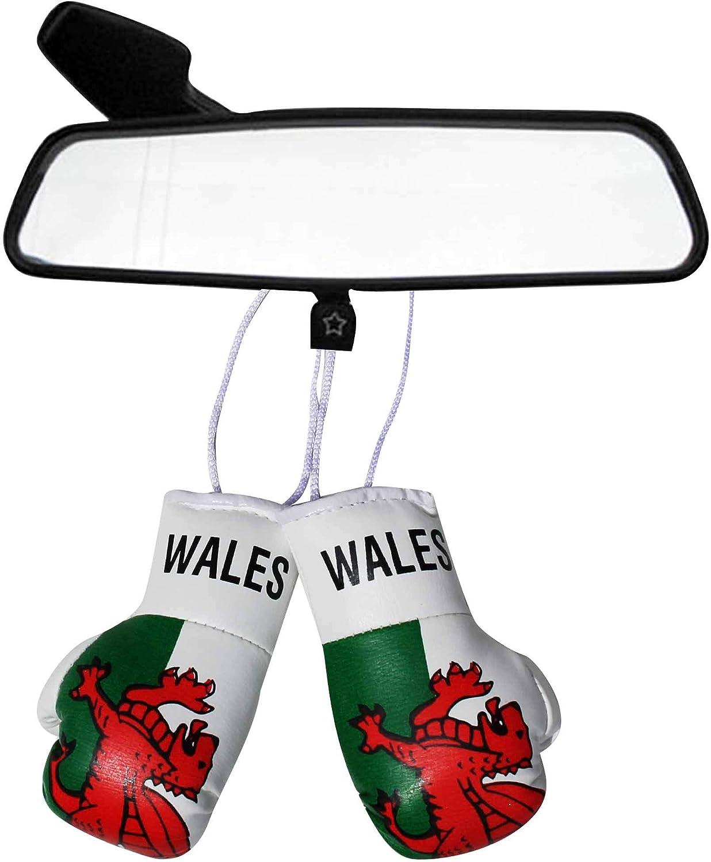 Guantes de Boxeo con diseño de la Bandera de Gales para Coches o casa: Amazon.es: Deportes y aire libre