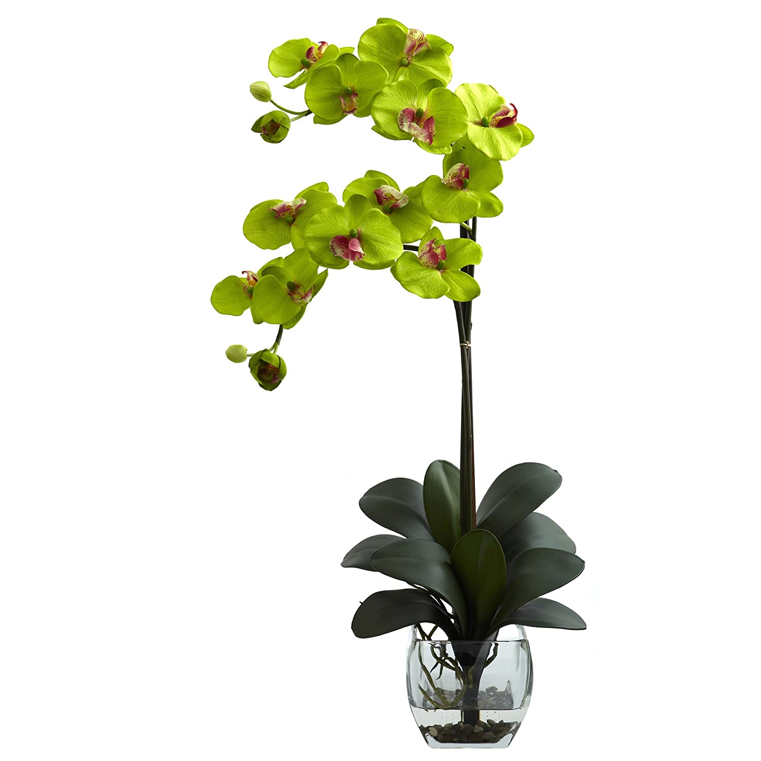 Nearly Natural 1323-GR Double Phalaenopsis Orchid with Vase Arrangement, Green