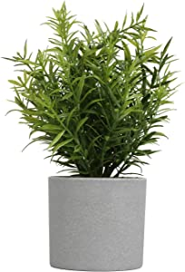 Megbeauty Small Fake Plants Potted - Fake House Plants for Home Decor, Office - Bamboo Leaves