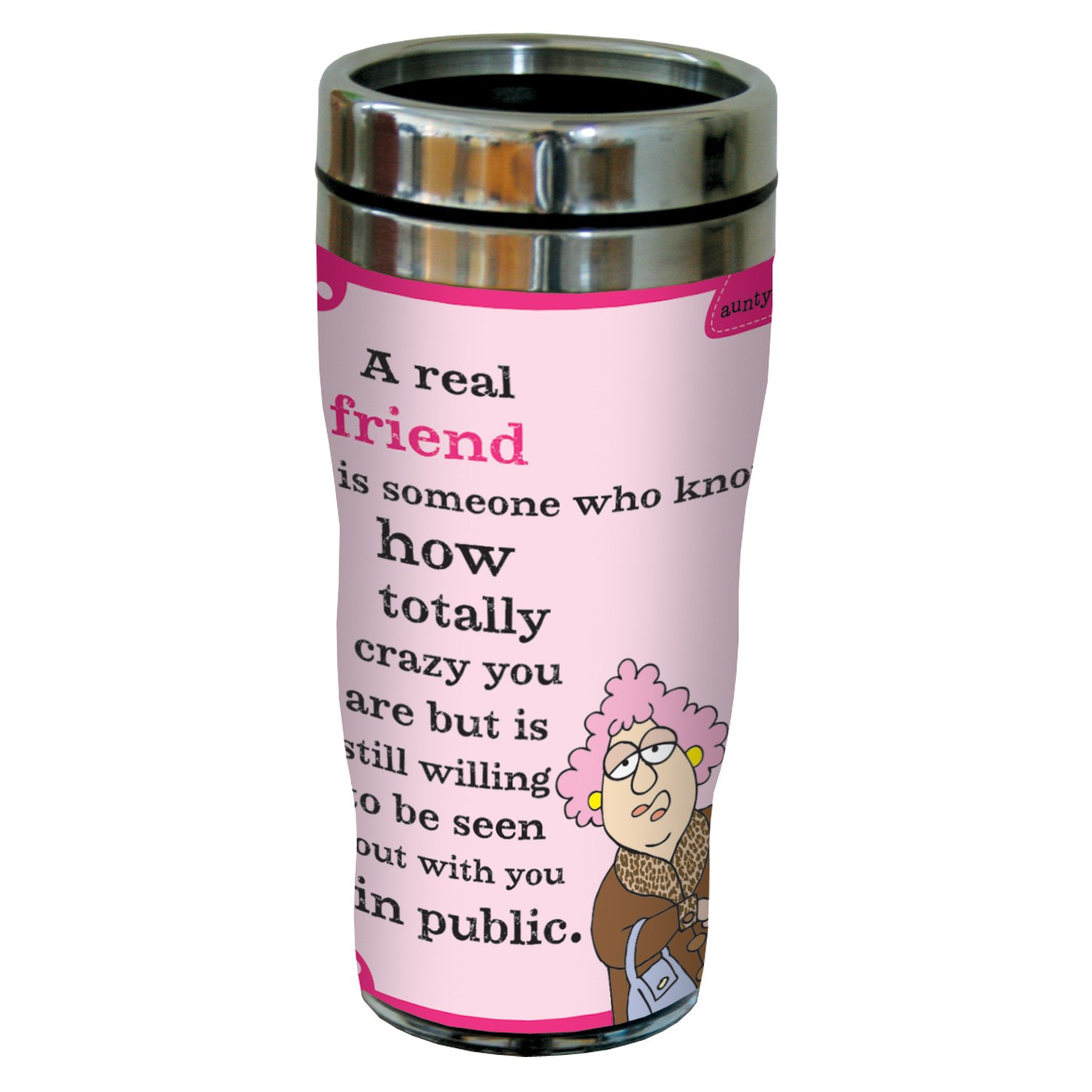 16 Oz Sip N Go Stainless Steel Lined Tumbler Tree Free Tree-Free Greetings sg23829 Hilarious Aunty Acid Real Friends by The Backland Studio Ltd