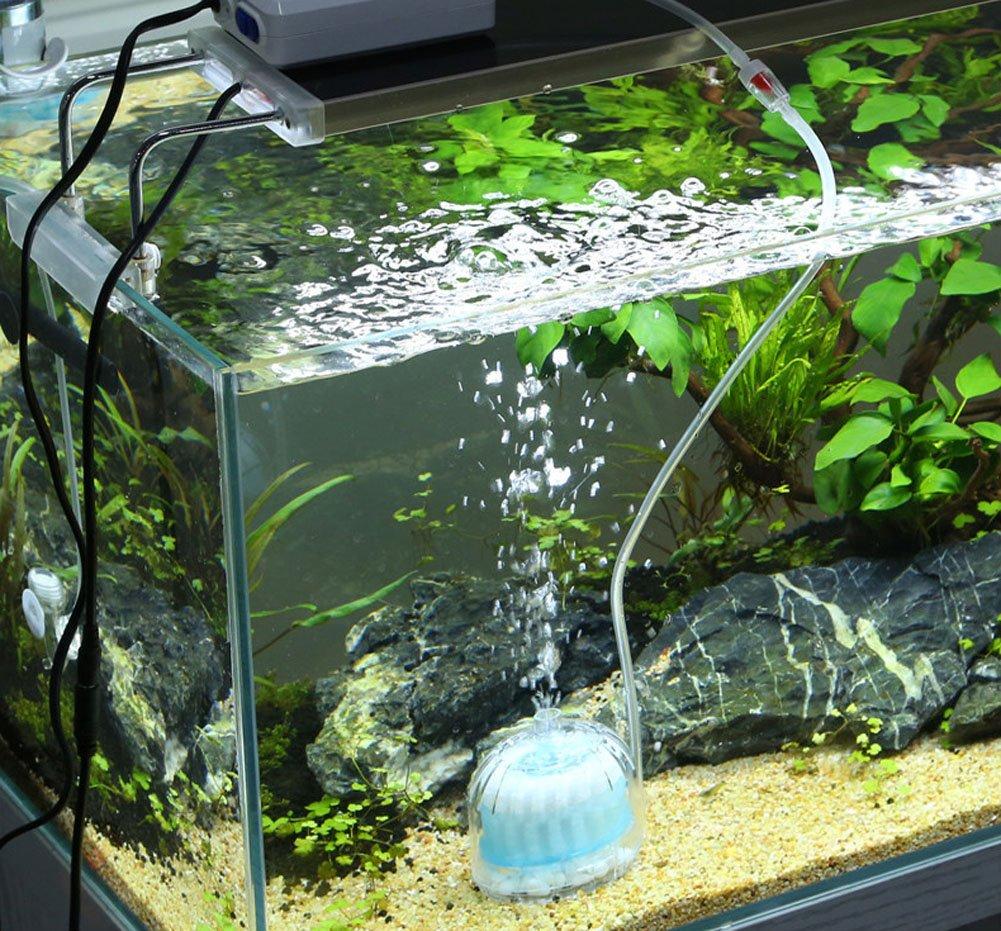 LONDAFISH Filtro neumático bioquímico Activado del Acuario del Filtro de Carbono del Mini Acuario (Blanco): Amazon.es: Productos para mascotas