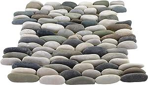 Margo Garden Products PT-SKBLD Rain Forest Pebble Tile, Multi Color