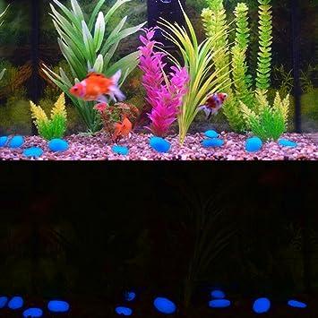 Amaza 300pcs Guijarros Luminosos Piedras Decorativas Acuario Jardín Decoración (Azul & Verde & Blanco): Amazon.es: Jardín