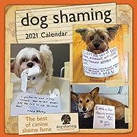 Image for Dog Shaming 2021 Wall Calendar
