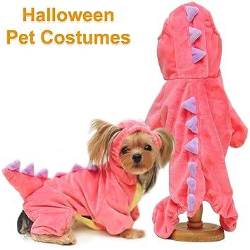 Ilmu Pengetahuan 1 Dog Costume Ideas For 2 Dogs