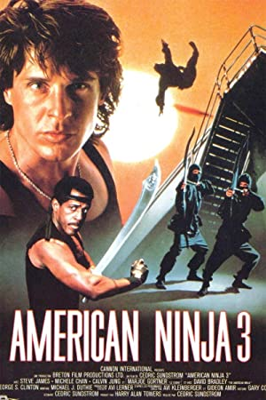 Amazon.com: American Ninja 3: Blood Hunt: David Bradley ...