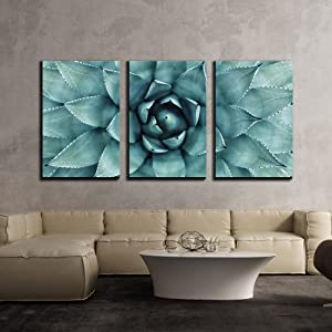 """wall26 - 3 Piece Canvas Wall Art - Sharp Pointed Agave Plant Leaves - Modern Home Art Stretched and Framed Ready to Hang - 16""""x24""""x3 Panels"""
