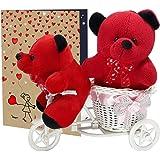 LOF Beautiful Teddy Gifts For Wife and Girlfriend Birthday Gifts set Valentine Gift Beautiful Teddybear set02