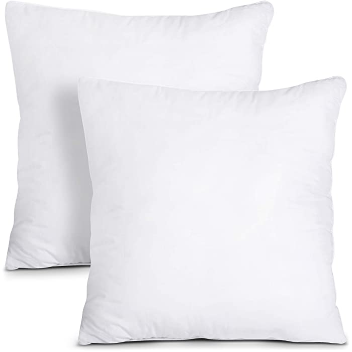 Utopia Bedding Throw Pillows Insert (Pack of 2, White) - 20 x 20 Inches Bed and Couch Pillows - Indoor Decorative Pillows