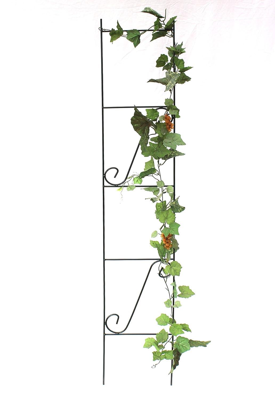 DanDiBo Steckzaun Melody Rankhilfe Rankgitter aus Metall H/öhe 56 cm Breite 80 cm Kletterhilfe Zaun
