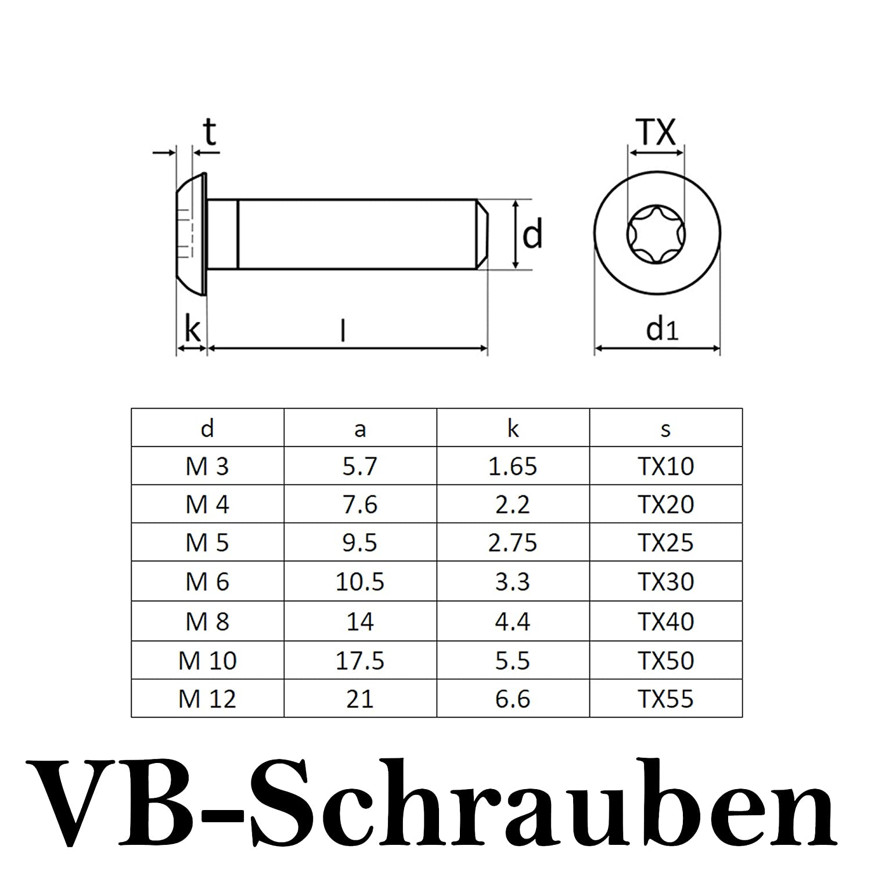 Linsenschrauben 10 St/ück ISO 7380 rostfreier Edelstahl A2 V2A M5x40 | Vollgewinde VB-Schrauben Flachkopfschrauben Linsenkopfschraube | Innensechsrund TX ISR