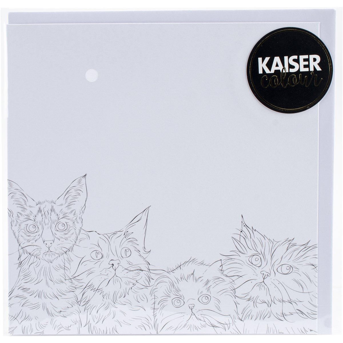 KaisercraftPurrfect KaiserColour Gift Card with Envelope 6 x 6