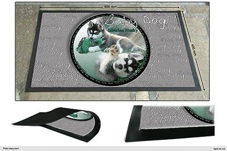 Pets-Easy.com Alfombra Siberian-Husky-Baby-Dog: Amazon.es: Hogar