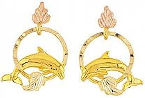 Amazon.com: Negro Hills Oro Delfín arete: Jewelry