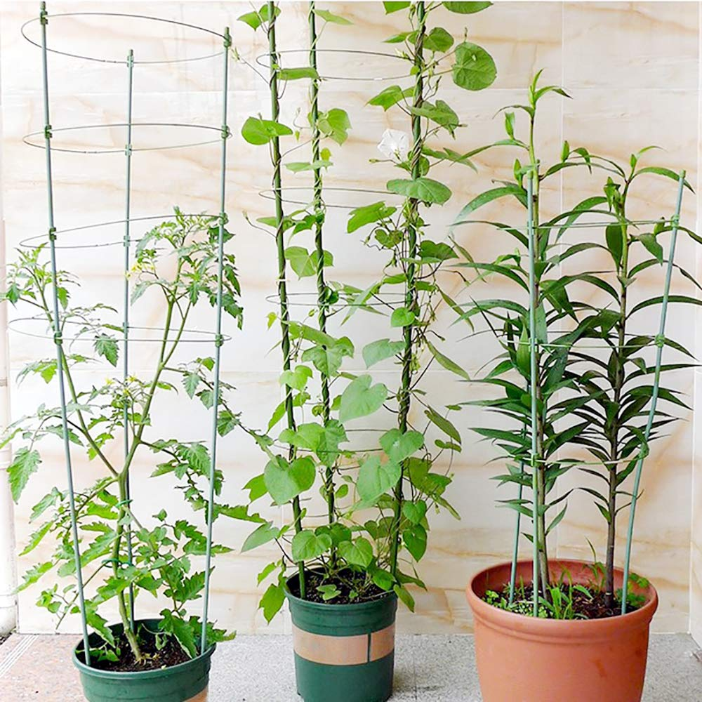 ecotrellis Mini enrejado jardín enrejado planta apoyo 5 Sets verde ...