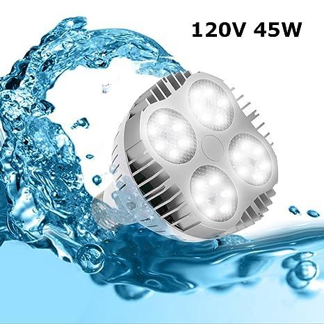 Jenaka - Bombilla LED de repuesto para piscina, 35 W, 6000 K, luz