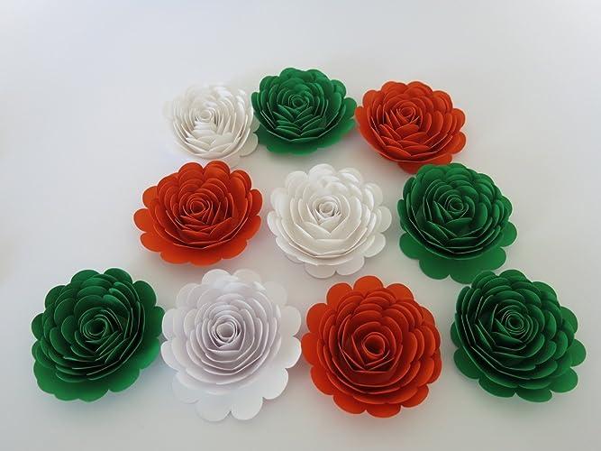 Amazon 10 roses ireland tricolor flag colors orange white 10 roses ireland tricolor flag colors orange white green irish american wedding decorations mightylinksfo