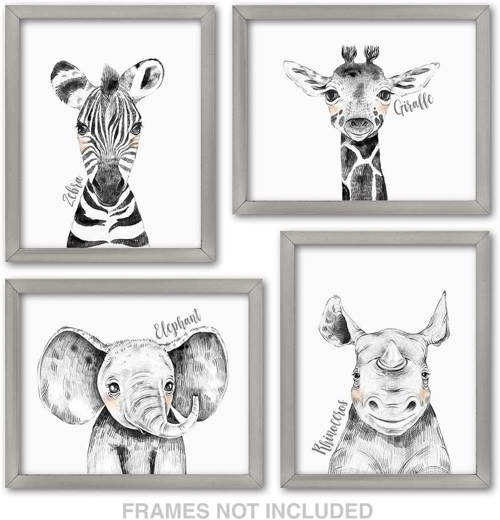 Confetti Fox Zoo Animals Safari Baby Nursery Wall Art Decor - 8x10 Unframed Set of 4 Prints - Zebra Elephant Giraffe Rhino - Gender Neutral Boy Girl Jungle Artwork Pictures