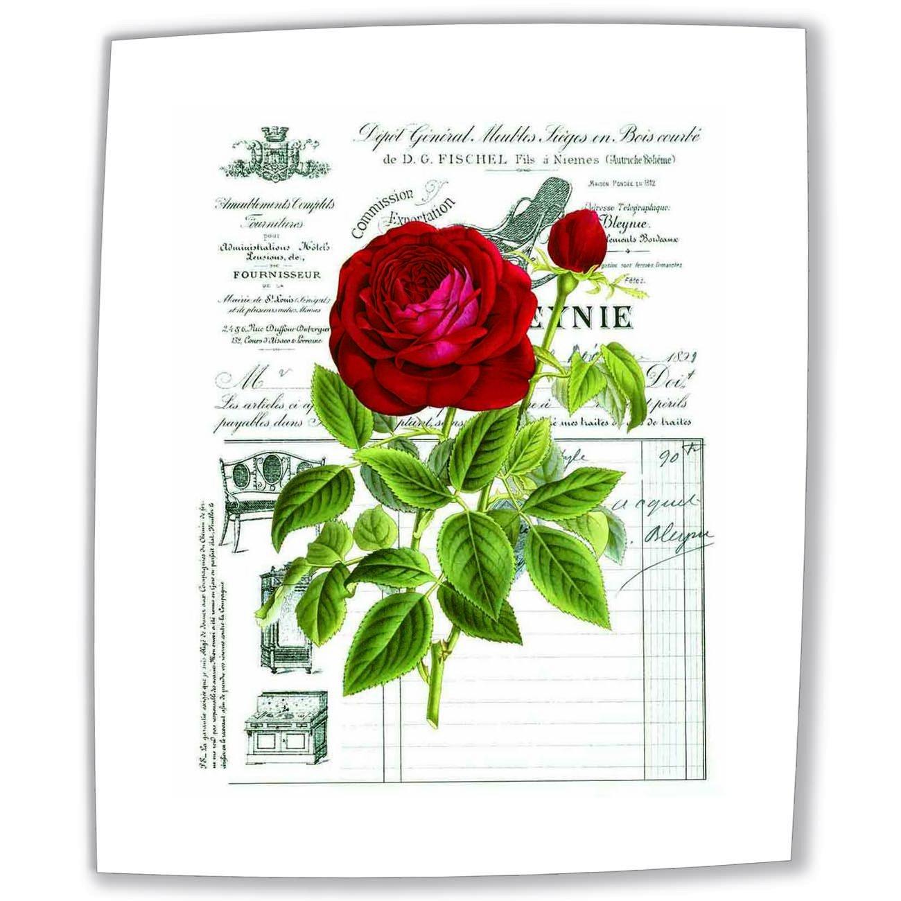 Cuadro sobre Lienzo - Rose V Pinturas Cuadros Con Flores Y Frases Vintage Pared Impresións - 40X50 cm: Amazon.es: Hogar