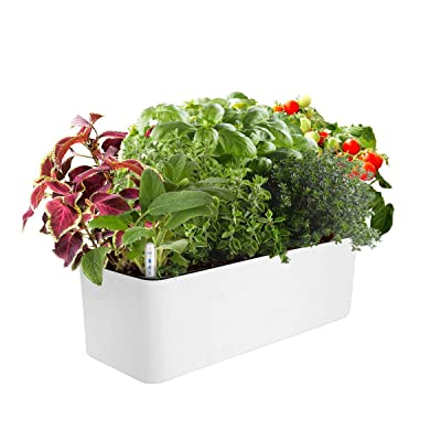 J&C Self Watering Planter, Window Gardening Box, 16x 5.5 Inch, Indoor Home Garden, Modern Decorative Planter Pot for All Indoor Plants, Rectangle, White (Plants Not Included) : Garden & Outdoor