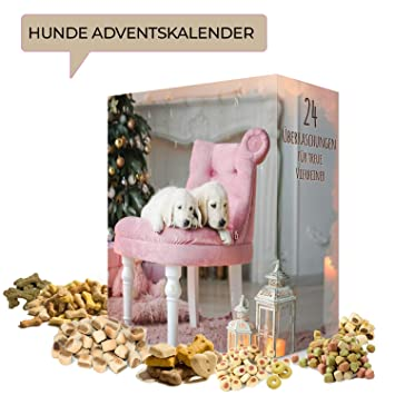 Weihnachtskalender Für Hunde.Adventskalender Für Hunde I Weihnachtskalender Mit 24 Beliebten Hundeleckerlis I Hunde Kalender Weihnachtszeit Adventszeit I Snacks Für Hunde Mit