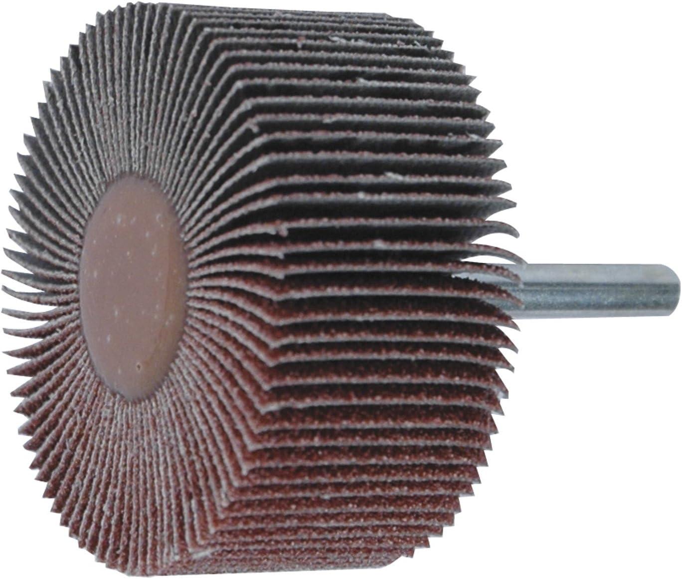 Leman 9931560 Roue /à lamelle en Corindon sur tige de /ø 6 mm 30 x 15 mm Grain 60