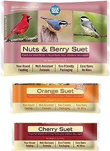 Blue Seal Berry Blend Wild Bird Suet Variety 6pk