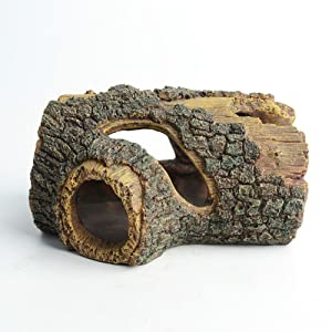 Hollow tree trunk for Betta