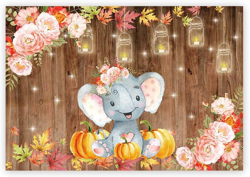 Funnytree 7x5ft Floral Elephant Party Backdrop Autumn Rustic Wooden Floor Princess Girl Baby Shower Birthday Photography Background Fall Maple Leaves Pumpkins Cake Table Decoration Banner Photo Booth