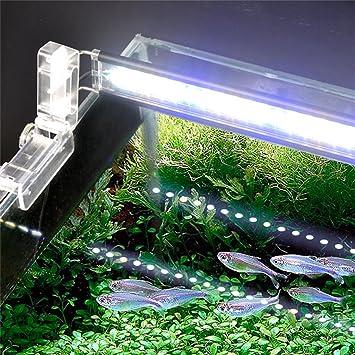 Aquarium Lighting TRRE- Plantas de Acuario Accesorio Fluorescente LED Faro Luces del Acuario Faro Alto Brillo Luces a Prueba de Agua (Tamaño : 18 cm): ...