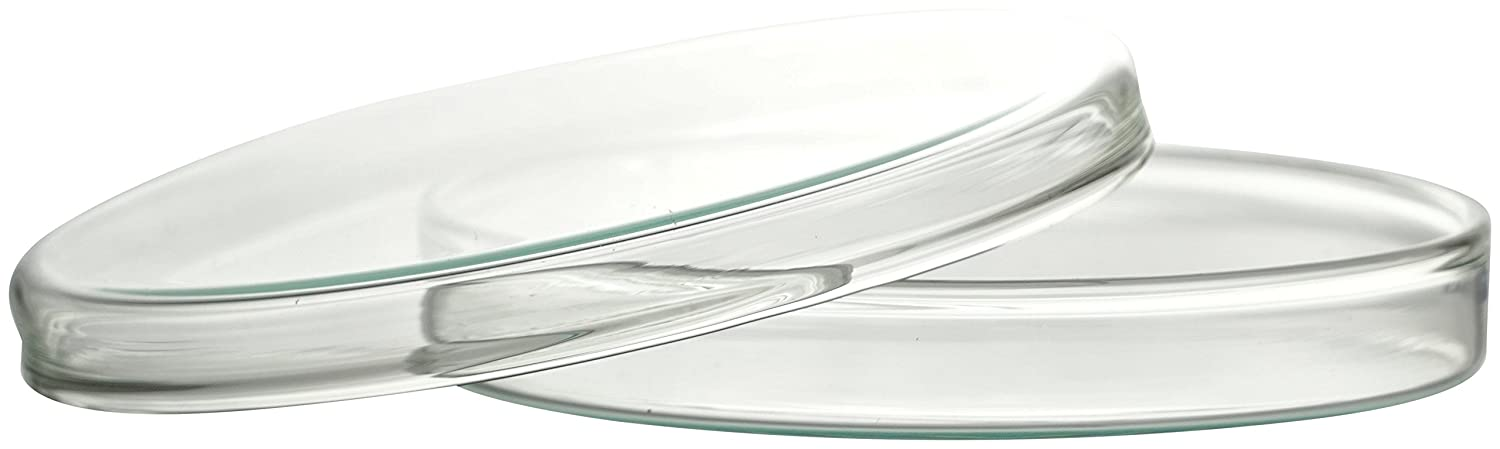 Borosilicate Glass 3.3 Non-Porous Diameter 80 mm x 15 mm Witeg 5/830/003/B Petri Dishes with Lid Complete Package