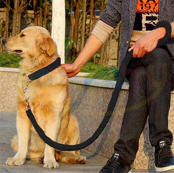 Correa para perro de alta resistencia de seaNpem, ajustable, con clip de metal resistente, para perros y cachorros: Amazon.es: Productos para mascotas