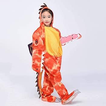Amazon.com: Disfraz de dinosaurio para niños, disfraz de ...
