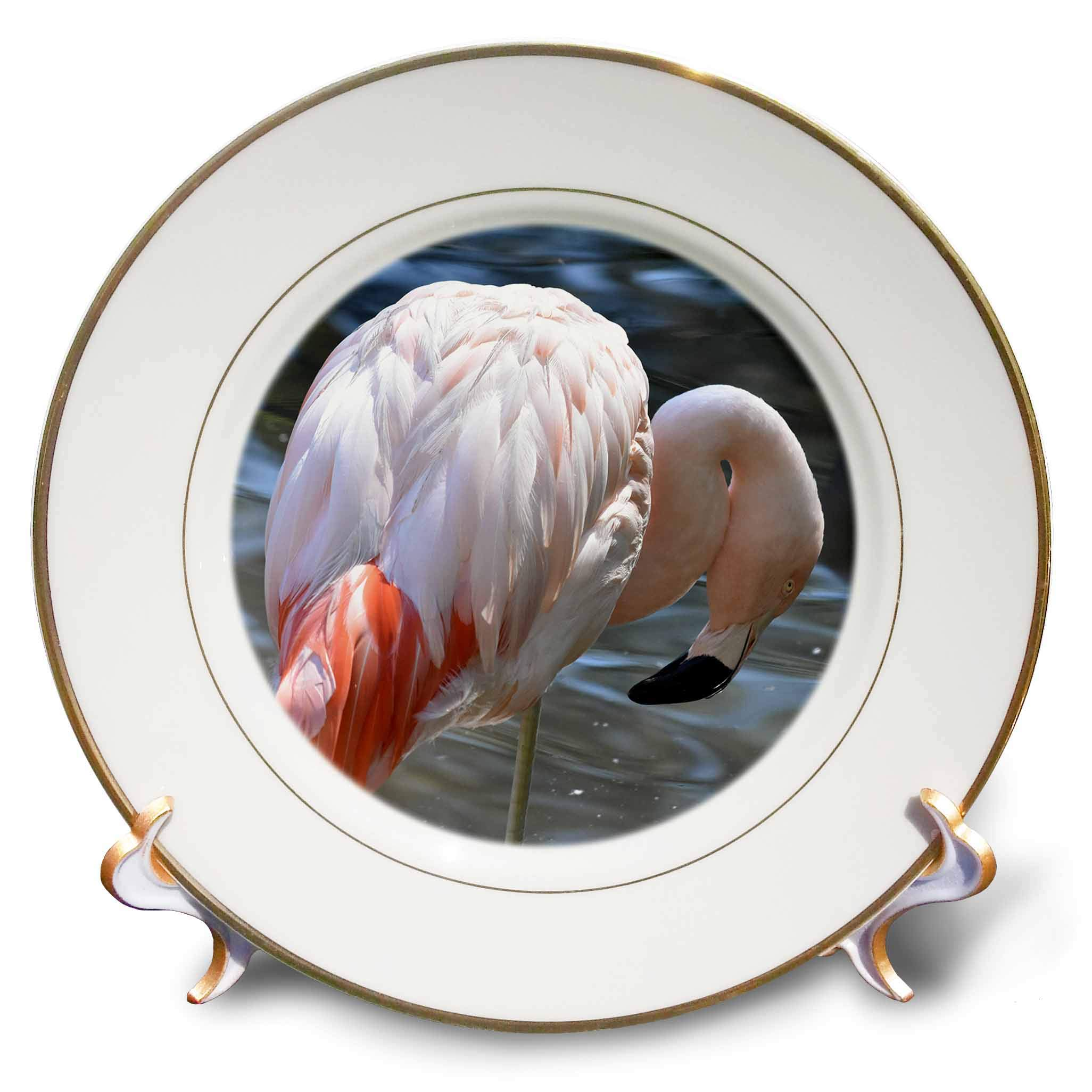 3dRose Susans Zoo Crew Animal - Light Pink Flamingo Looking Down - 8 inch Porcelain Plate (cp_294889_1)
