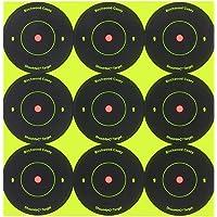 Birchwood Casey Shoot-N-C 2-Inch Round Bull's-Eye Target (Pack of 12)