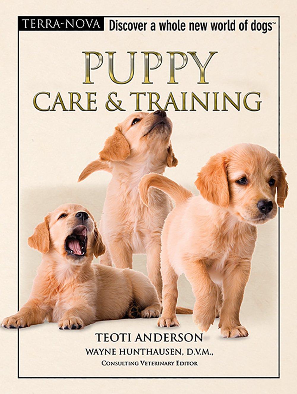 Download Puppy Care & Training (Terra-Nova Series) ebook