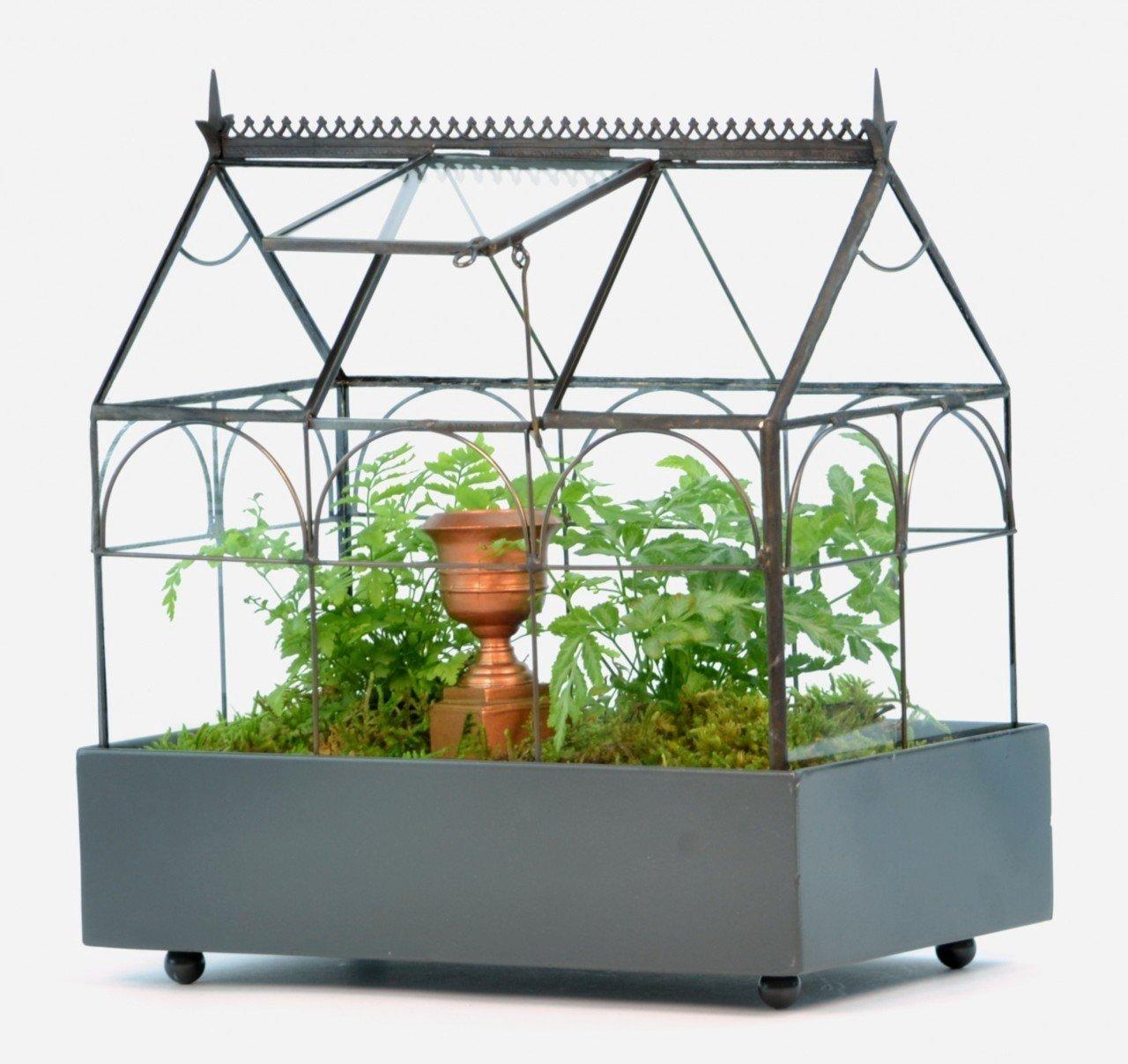H Potter Plant Terrarium Container Wardian Case Indoor Glass Succulent Planter 65-1 by H Potter
