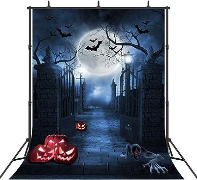 Zhy Halloween Ghost Backdrop 7x5ft Creepy Graveyard Photos Background Pumpkin Lights Crow Photos Magic Potion Gloomy Night Halloween Eve Events Decor Halloween Cosplay Party Photos Props