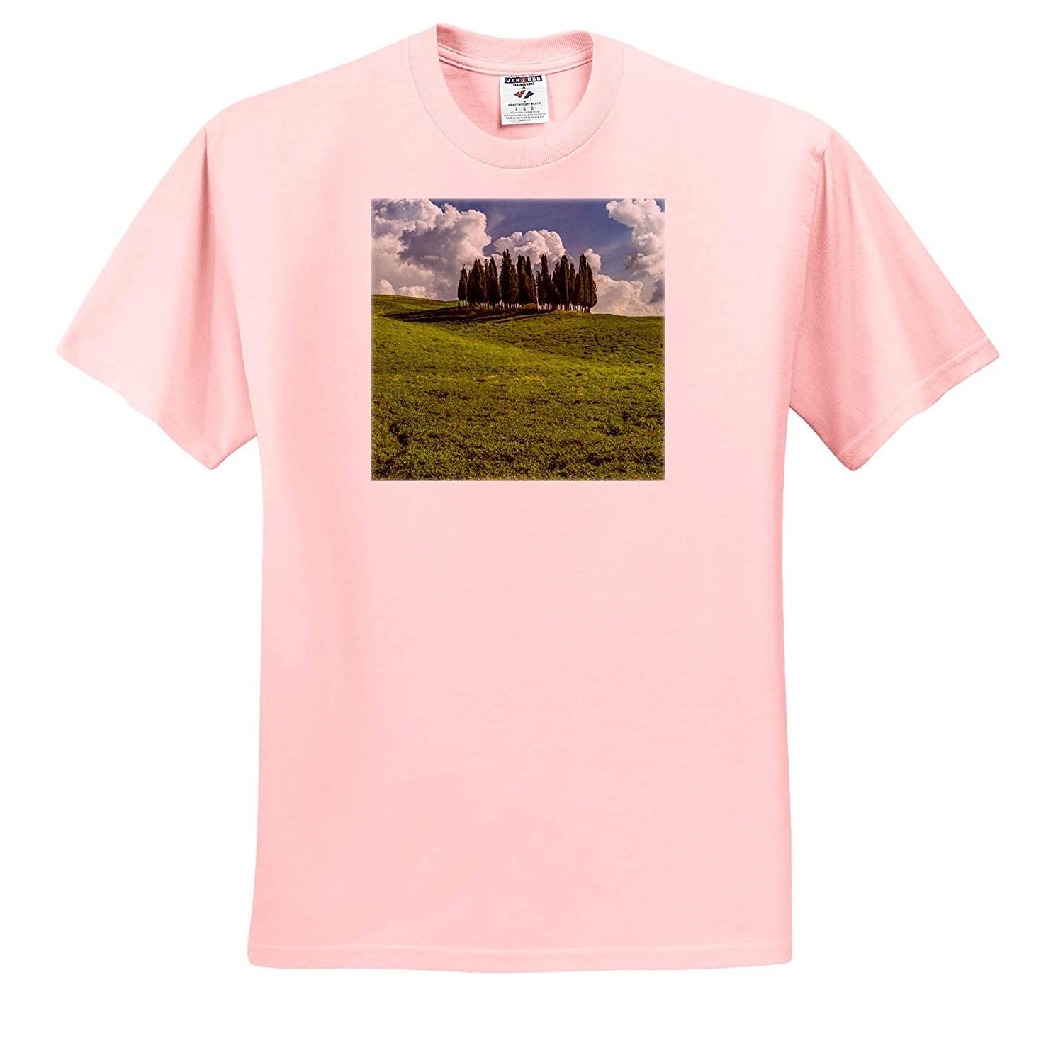 ts/_313709 Tuscany Adult T-Shirt XL 3dRose Danita Delimont Italy Tuscany Pines on a Hillside