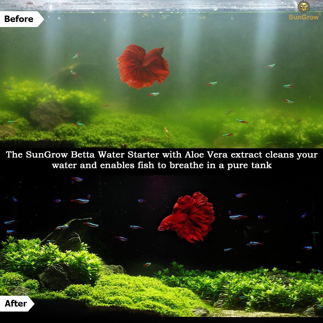 Amazon.com : SunGrow Betta Water Starter : Pet Supplies